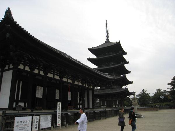 2008.11.27 京都--奈良--興福寺 (18).JPG