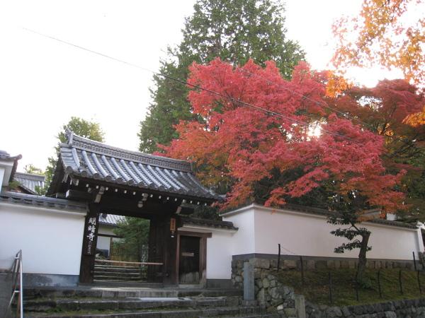 2008.11.27 京都--東福寺 (15).JPG