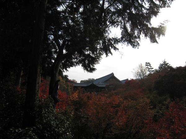 2008.11.27 京都--東福寺 (19).JPG