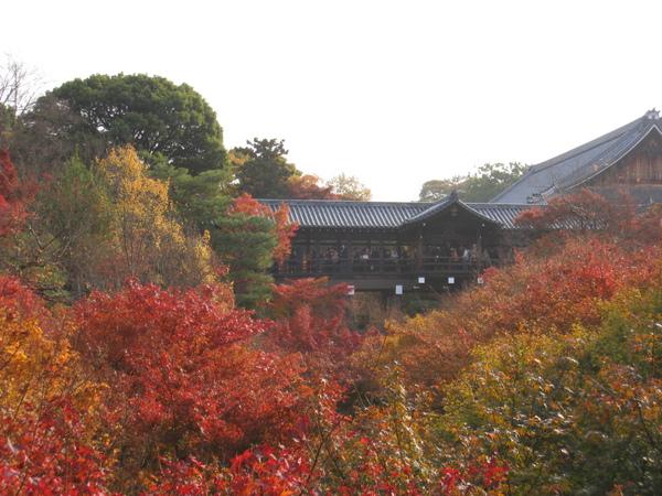 2008.11.27 京都--東福寺 (27).JPG