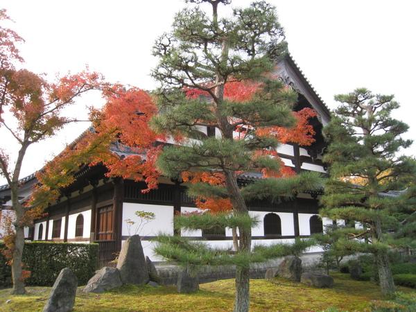 2008.11.27 京都--東福寺 (49).JPG