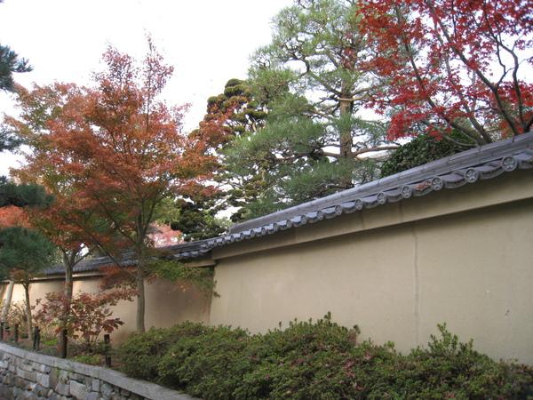 2008.11.27 京都--東福寺 (51).JPG