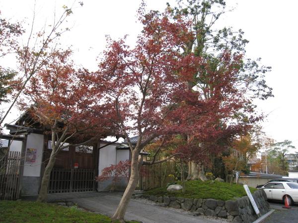 2008.11.27 京都--東福寺 (54).JPG