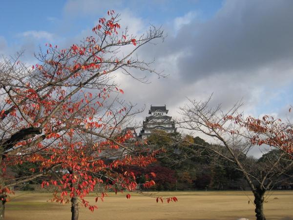 2008.11.28 大阪--姬路城 (29).JPG