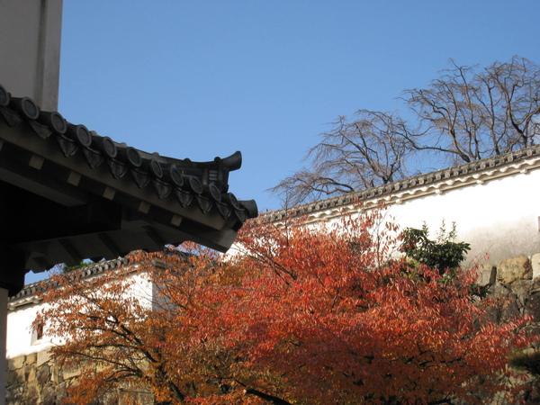 2008.11.28 大阪--姬路城 (41).JPG