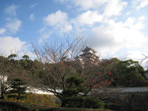 2008.11.28 大阪--姬路城 (43).JPG