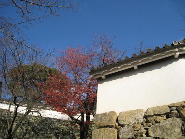 2008.11.28 大阪--姬路城 (47).JPG