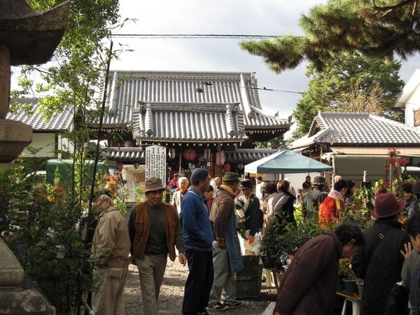 2008.11.25 京都--北野天滿宮 (3).JPG