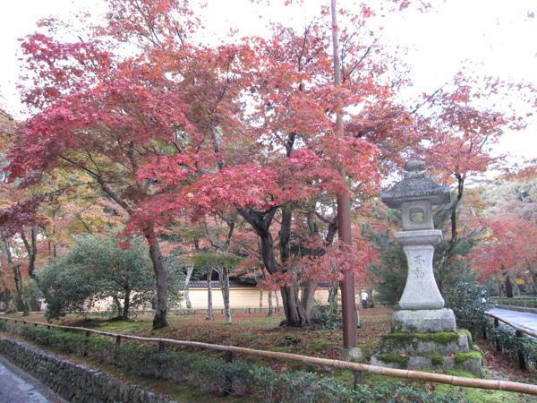 2008.11.25 京都--金閣寺 (7).JPG