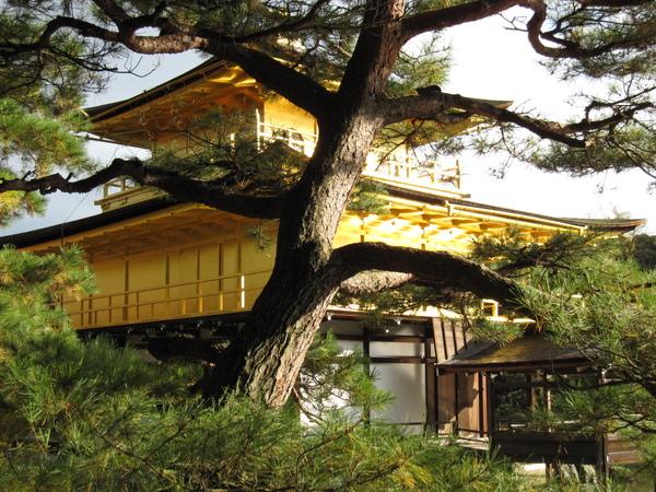 2008.11.25 京都--金閣寺 (32).JPG
