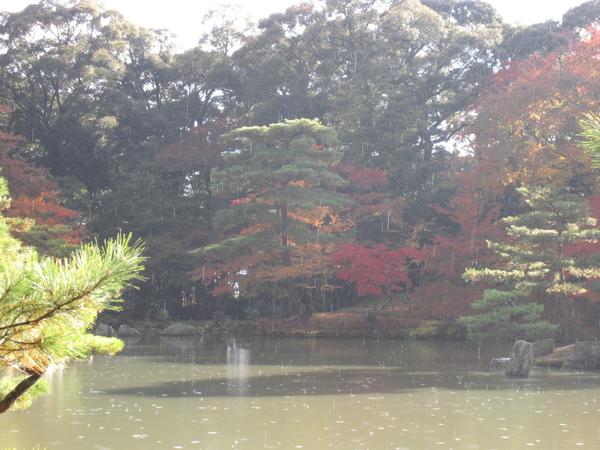 2008.11.25 京都--金閣寺 (33).JPG