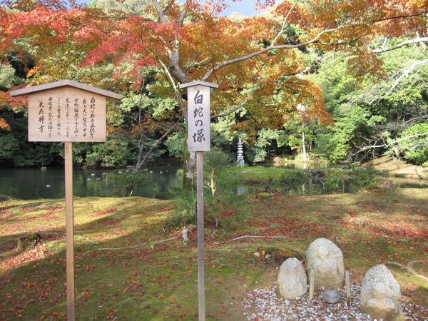 2008.11.25 京都--金閣寺 (42).JPG