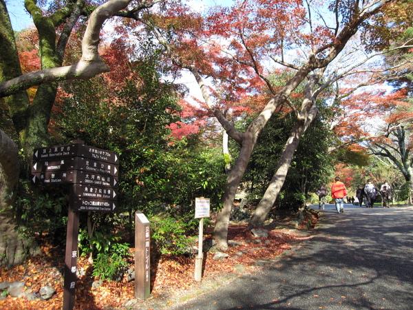 2008.11.25 京都--嵐山 (5).JPG