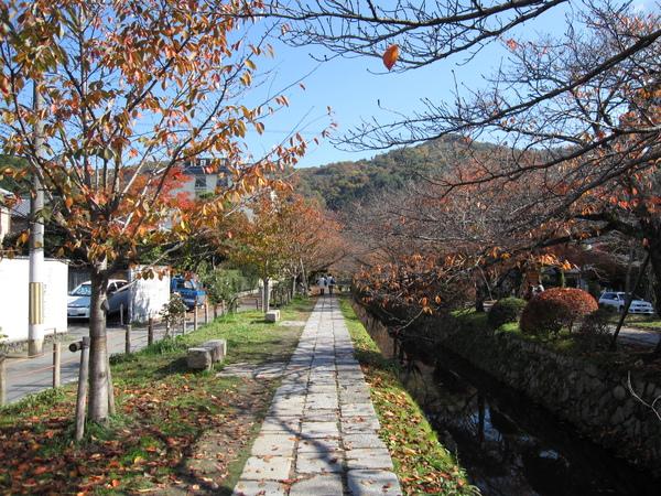 2008.11.26 京都--哲學之道 (7).JPG