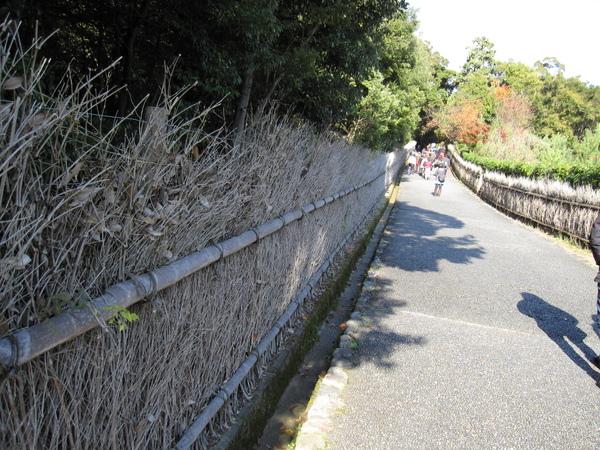 2008.11.25 京都--嵐山 (11).JPG