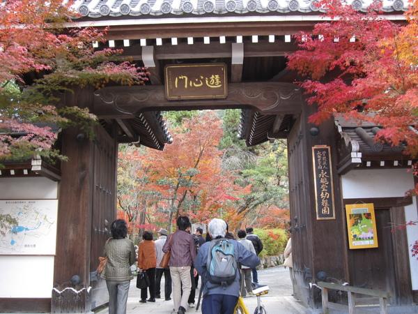 2008.11.26 京都--永觀堂 (4).JPG