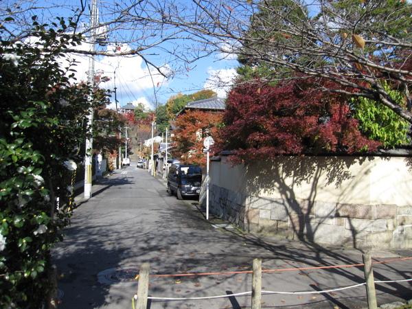 2008.11.26 京都--哲學之道 (11).JPG