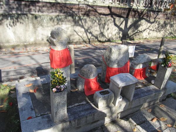 2008.11.26 京都--哲學之道 (16).JPG