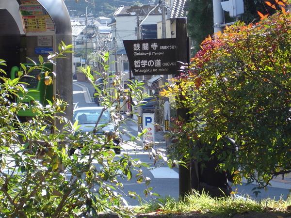 2008.11.26 京都--哲學之道 (41).JPG