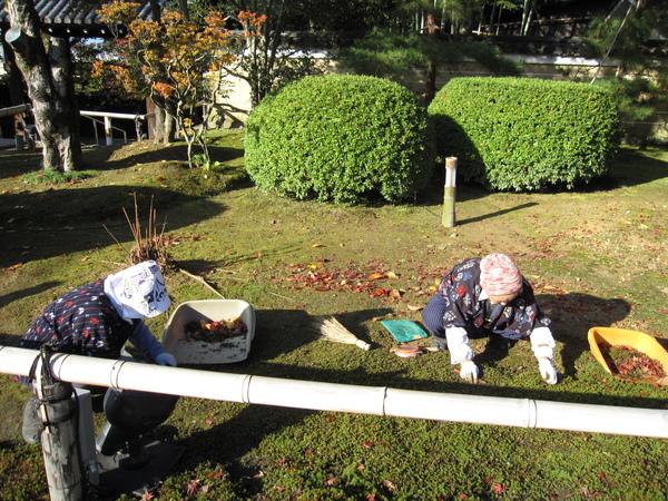 2008.11.26 京都--高台寺 (11).JPG