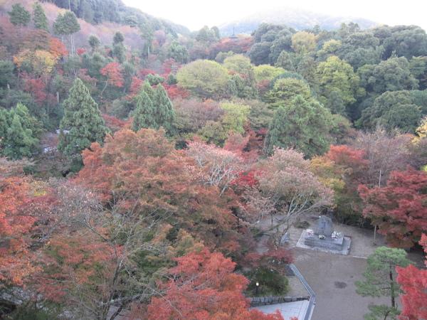 2008.11.26 京都--清水寺 (60).JPG