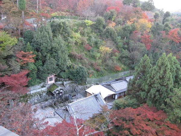2008.11.26 京都--清水寺 (82).JPG