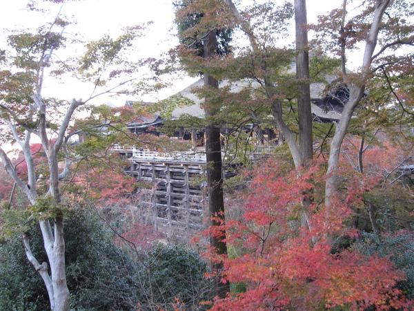 2008.11.26 京都--清水寺 (108).JPG