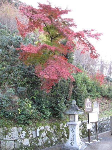 2008.11.26 京都--清水寺 (110).JPG