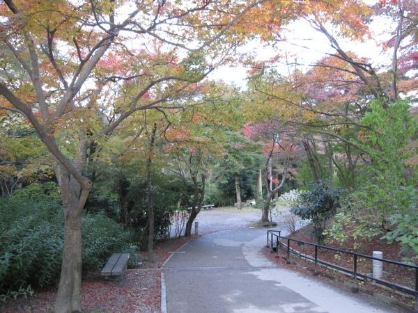2008.11.26 京都--清水寺 (153).JPG