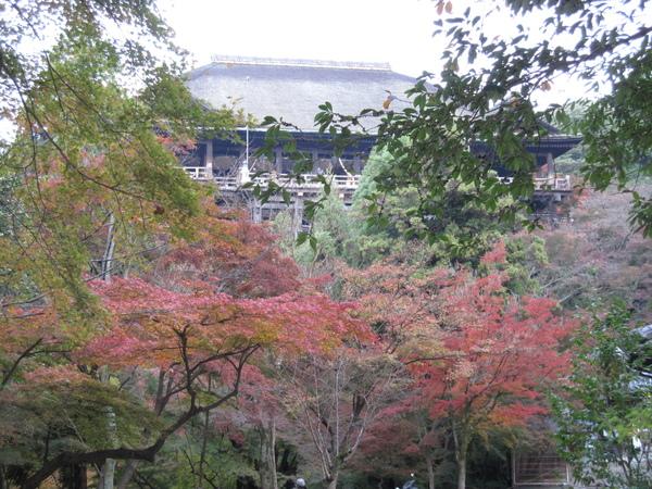 2008.11.26 京都--清水寺 (156).JPG