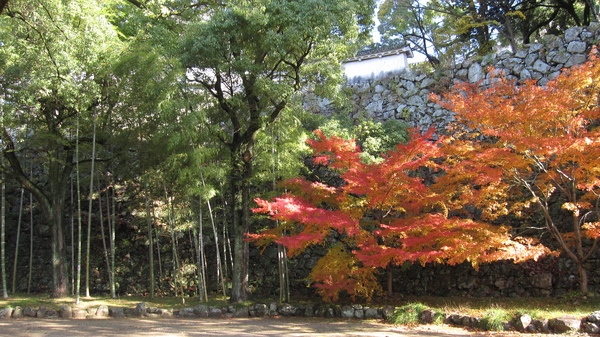 2008.11.28 大阪--姬路城 (155).JPG