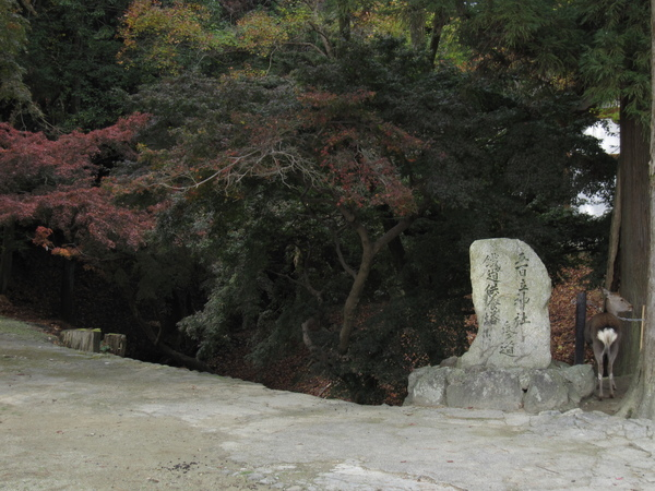 2007.11.27 奈良-- 東大寺 (32).JPG