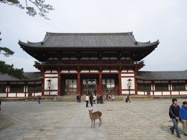 2007.11.27 奈良-- 東大寺 (33).JPG