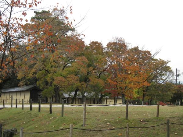 2007.11.27 奈良-- 興福寺 (30).JPG
