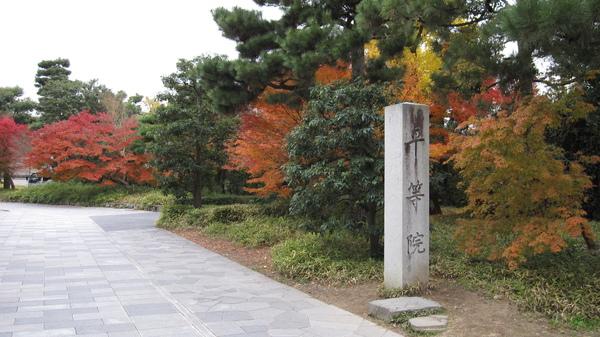 2008.11.27 宇治-- 平等院 (1).JPG