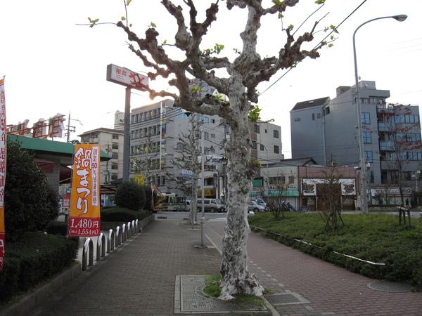 2008.11.27 京都-- J-Hoppers 前 (1).JPG