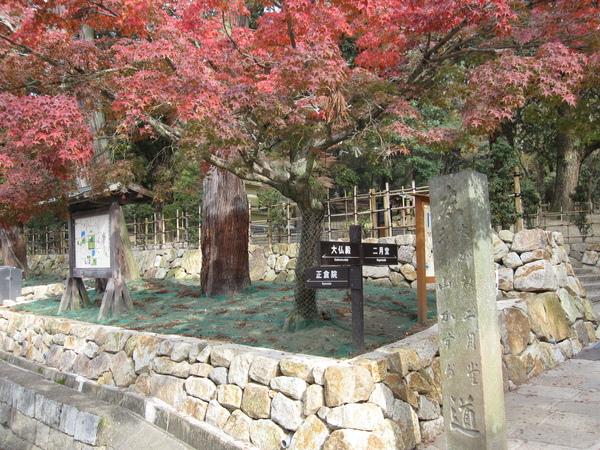 2008.11.27 奈良--春日大社 (2).JPG