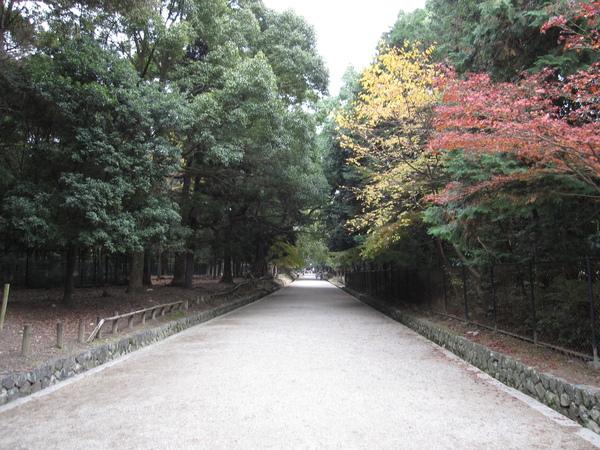 2008.11.27 奈良--春日大社 (7).JPG