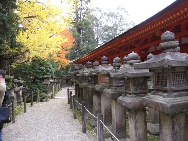 2008.11.27 奈良--春日大社 (41).JPG