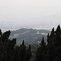 99.02.20 陽明山春賞櫻(27).JPG