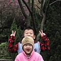 99.02.20 陽明山春賞櫻(58).JPG