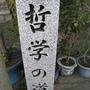 2008.11.26 京都--哲學之道 (73).JPG