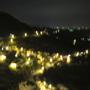 98.01.31 九份遊--山海觀景觀餐廳 (1).JPG