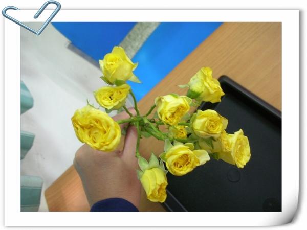 花材:迷你玫瑰
