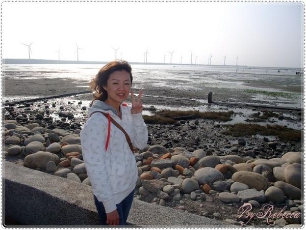 0207_2008整排的風車真壯觀.JPG