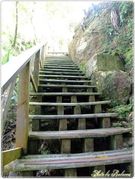 222_0040真的是一條規劃完善的山林步道.JPG