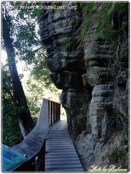 222_0092依岩層而建的木棧步道  挺狹窄的.JPG