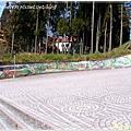 221_0063阿里山的奇景都在壁畫上了.JPG