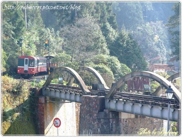 221_0078火車來了  火車來了.JPG