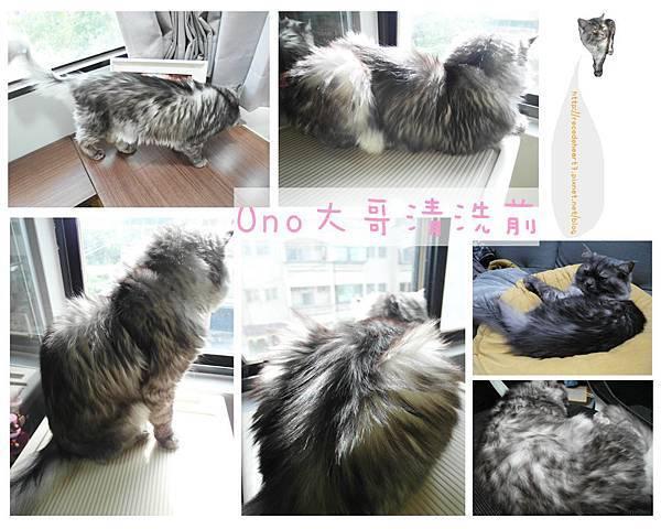 UNO清洗前 (Copy).jpg